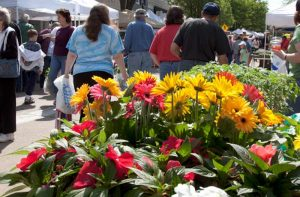 Flower and Jazz 5K and Festival @ Historic Downtown Westminster | Westminster | Maryland | United States