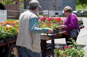 49th Annual Flower and Plant Market @ Union Mills Homestead