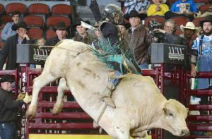 International Bull Riding @ Carroll County Ag Center - Danielle Shipley Arena