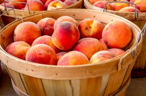 """Carroll County Farmers' Market """"Peach Festival"""" @ Carroll County Ag center"""