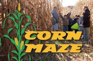 Carroll County Ag Center Corn Maze @ Carroll County Agriculture Center