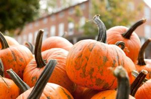 Fall Harvest Celebration @ Carroll County Farm Museum